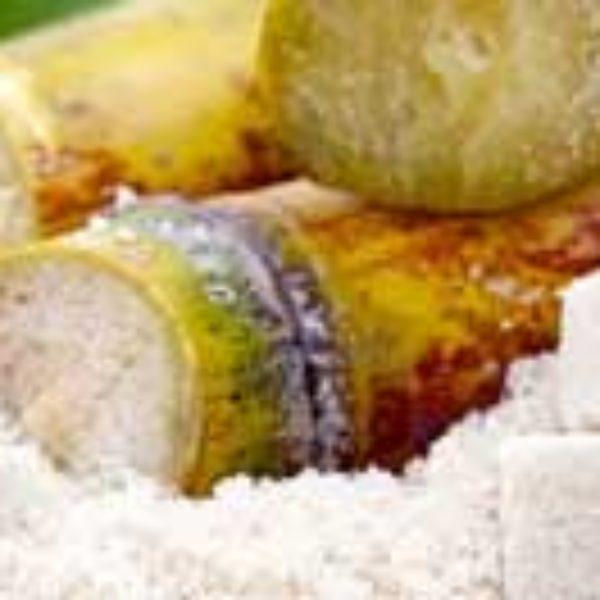 Une histoire de sucre : la cause d'un beau début pour la promotion de l'immobilier à l'île Maurice