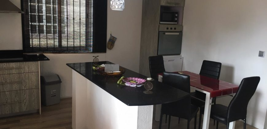 Appartement F2 moderne, Mont Choisy