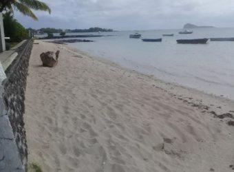 Terrain proche plage, Grand Gaube