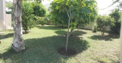 Grande villa F5 avec piscine, Tamarin