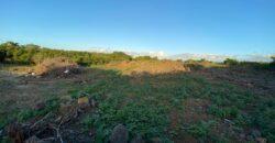 Terrain de 3672 m2, Pereybère